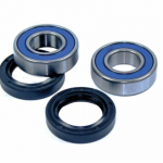 Honda TRX250R FourTrax ATV Rear Wheel Bearing Kit 86-89